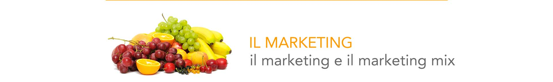 marketing pubblicita bologna